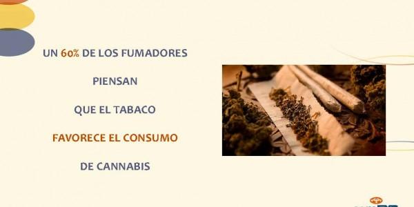 Presentacion_rueda_prensa_XVI_SSH_Página_13