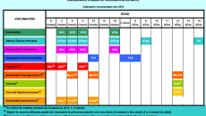 calendariovacunal2015