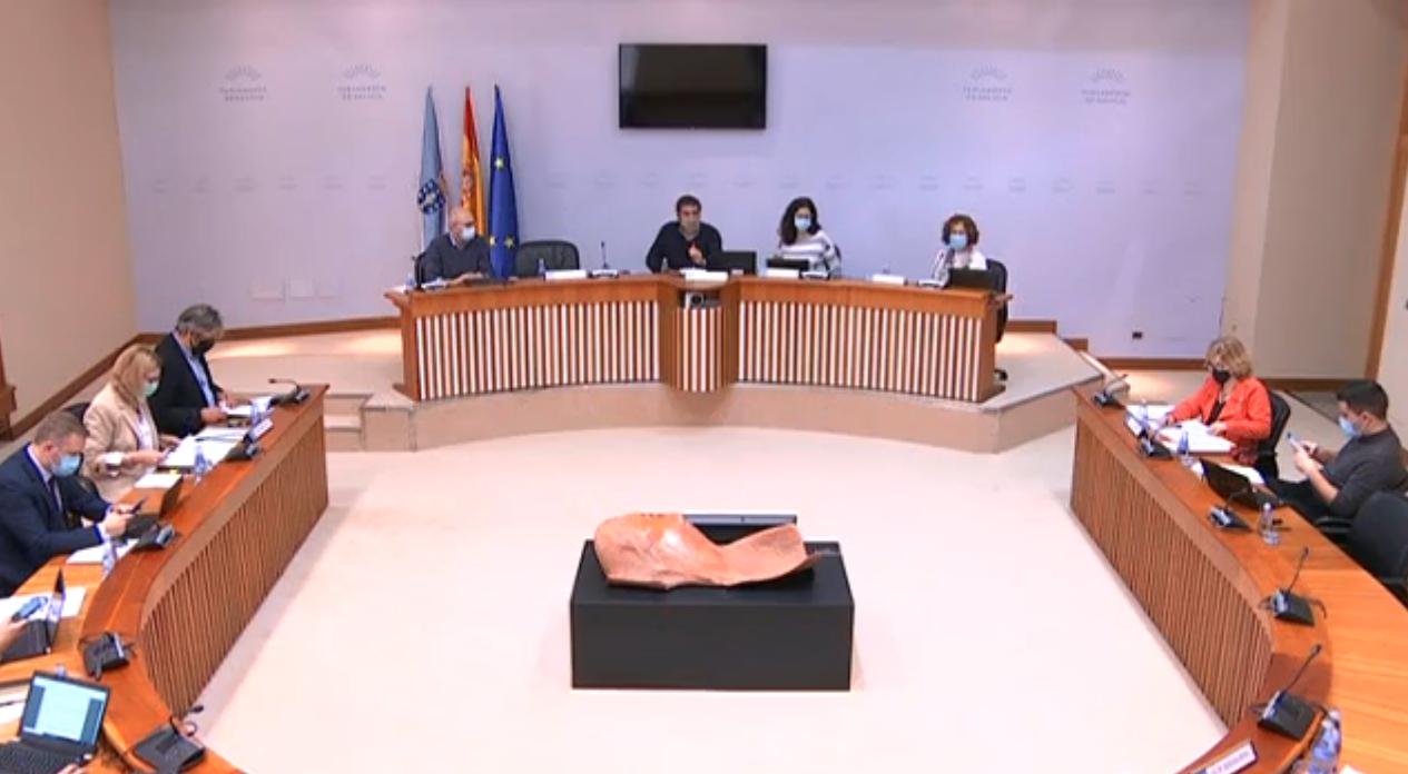 Comisión non permanente para a reactivación covid19 Parlamento de Galicia